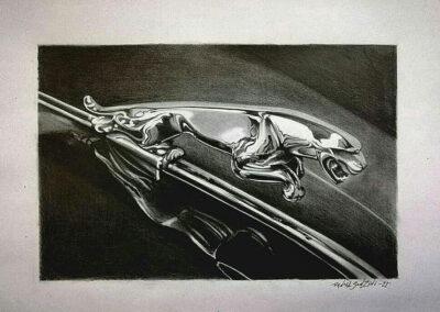insignia-jaguar-daniel-sonzini